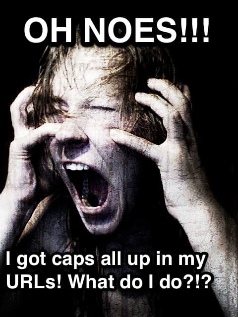 """Screaming girl with text: """"Oh noes!!! I got caps all up in my URLs! What do I do?!?"""""""